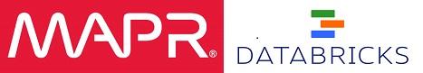 DSC Webinar logo 2